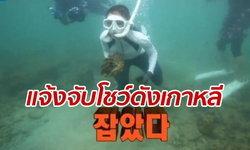 """อุทยานฯ โร่แจ้งความ """"รายการชื่อดังเกาหลี"""" งมจับหอยมือเสือมาเปิบ"""