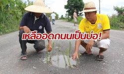 ชาวบ้านเหลืออด! ปลูกข้าวบนถนนเข้าหมู่บ้าน ประชดเป็นหลุมบ่อนานหลายปี