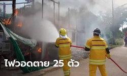 วูบเดียวย่างสด 25 ตัว ไฟไหม้บ้านแม่ค้าวอดทั้งหลัง หมาแมวตายเพียบ