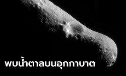 """นาซาพบ """"น้ำตาล"""" บนอุกกาบาต ที่เคยชนโลกหลายพันล้านปีก่อน เชื่อปัจจัยเกิดสิ่งมีชีวิต"""