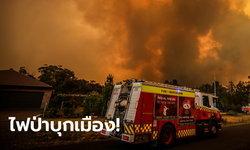 ไฟป่าออสเตรเลีย บุกถึงเมืองลิธโกว์ เผาบ้านเรือนเสียหาย 12,000 ชีวิต อพยพหนีตาย