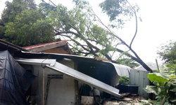 """ลมพายุแรง-พัดบ้านเรือนชาวบ้าน 2 หมู่บ้านใน """"อ.นาตาล"""" เสียหาย 14 หลังคาเรือน"""