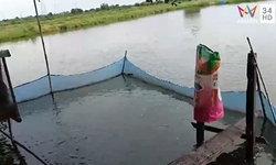 หญิงดับปริศนาคาบ่อเลี้ยงปลา ญาติเผยตกน้ำเป็นชม.–ชาวบ้านชี้พิรุธ เพิ่งเจอก่อนตาย