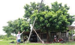 ชาวบ้านทึ่ง พายุทำเสาไฟฟ้าเอน จนท.มาแก้ไขด้วยการใช้ไม้ค้ำยัน