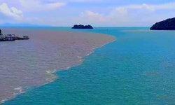 นักท่องเที่ยวฮือฮา ปรากฎการณ์น้ำทะเล 2 สี แหลมสิงห์ จันทบุรี