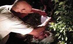 ครูวัยเกษียณเจอทารกถูกจับยัดถุง-ทิ้งป่าช้า โบกรถอยู่นานไม่มีใครจอดรถช่วย
