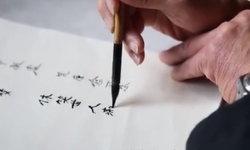 ตามคำขอ ชายชราคัดอักษรจีน 3 ล้านตัว เพราะคำพูดของภรรยาก่อนสิ้นใจ