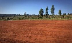 รัฐบาลโร่แจง ดราม่าถางป่าทำที่จอด ฮ. รับนายกฯ ชี้บิดเบือนทำคนอื่นเสียหาย