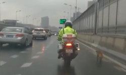 อบอุ่นหัวใจ ตำรวจจีนใจดีพาน้องหมาจรจัดเดินหลง ลงจากทางด่วนปลอดภัย
