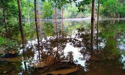 ชาวบ้านพิศวง หนองน้ำแห้งขอดเกือบ 40 ปี อยู่ๆ น้ำผุด เชื่อโยงกับแผ่นดินไหว