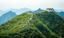เปิดผลวิจัยสุดทึ่ง จีน-อินเดีย มีพื้นที่ป่าเพิ่มขึ้นมากที่สุดในรอบ 20 ปี