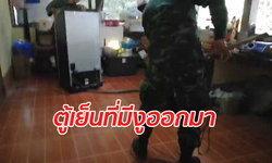 """""""งูจงอาง"""" ตัวเขื่องบุกซุกตู้เย็น ชาวบ้านขอทหารเข้าช่วยจับระทึก"""