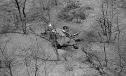 ช้างมากกว่า 350 ตัว ในบอตสวานา ล้มตายปริศนา