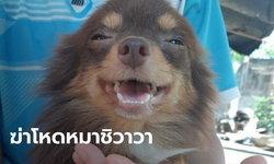 """""""เจ้าโกโก้"""" หมาชิวาวาหายจากบ้าน เจออีกทีเหลือแต่ซาก ถูกถลกหนัง-ตัดหัว-ตัดขา"""