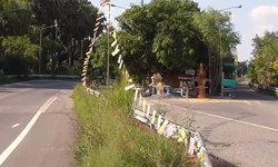 เปิดตำนานอาถรรพ์ต้นโพธิ์กลางถนน สุดเฮี้ยนจนต้องสร้างทางเลี่ยง ใครคิดทำลายมีอันเป็นไป
