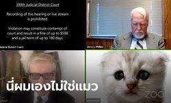 ทนายความมะกัน โชว์หน้าแมวเหมียวขณะไต่สวนคดีออนไลน์ เพราะเปลี่ยนฟิลเตอร์ไม่เป็น