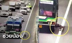 น่ารัก! พนักงานปอ.166 รับน้องหมาหลงบนทางด่วนขึ้นรถเมล์ ตามหาเจ้าของ