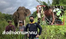 ช้างเพื่อนแก้ว ออกดมกลิ่นจนพบตัวลุงวัย 58 หลงป่านาน 16 วัน รอดปาฏิหาริย์