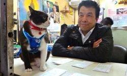 """ชัชชาติ โพสต์อาลัย """"เจ้าหลง แมวที่แข็งแกร่งที่สุดในปฐพี"""" จากไปพร้อมให้บทเรียน"""