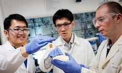 นักวิทย์สิงคโปร์พบวิธีย่อยสลายพลาสติกด้วยแสงอาทิตย์ ใช้เวลาแค่ 6 วัน