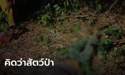 นายพรานออกล่าสัตว์เห็นพุ่มไม้สั่น นึกว่าสัตว์ป่า คว้าลูกซองยิง ที่แท้เป็นเพื่อนดับอนาถ