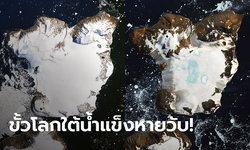 นาซาเทียบรูปก่อน-หลัง น้ำแข็งขั้วโลกใต้ละลายแทบไม่เหลือ เหตุอากาศวิปริตแตะ 20 องศา
