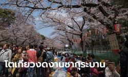 โควิด-19: ญี่ปุ่นยกเลิกงานดอกซากุระบานโตเกียว-พิธีรำลึกสึนามิปี 54