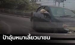 เปิดคลิปป้าอุ้มสุนัขขับเก๋ง เลี้ยวคร่อมเลน พุ่งชนรถคู่กรณี หนีหายไม่รับผิดชอบ