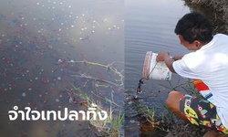 ภาพน่าเศร้า ผู้เพาะเลี้ยงเทปลากัดทิ้งนับแสนตัว หลังเจอพิษโควิด-19 ส่งออกไม่ได้