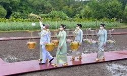 วันพืชมงคล 2563 โปรดเกล้าฯ ให้ พล.อ.สุรยุทธ์ เป็นประธานในพิธีหว่านพันธุ์ข้าว