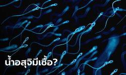 ไทยยังไม่พบเชื้อก่อโควิด-19 ในน้ำอสุจิ แพทย์เตือนหากมีเพศสัมพันธ์ควรสวมถุงยางทุกครั้ง