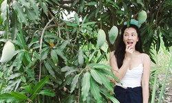 """""""นุ่น วรนุช"""" เช็คอินที่สวนมะม่วงของตัวเอง ชุดเข้าสวนเซ็กซี่จนถูกแซว"""