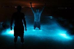 ฮือฮา! ทะเลสาบเปล่งแสงสีน้ำเงิน