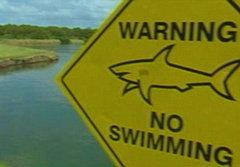 ประหลาด! เลี้ยงฉลามในสนามกอล์ฟ
