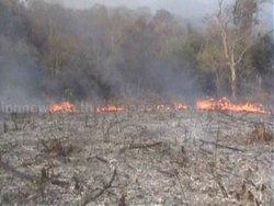 ไฟไหม้ป่าหญ้าแห้งลามติดอู่ต่อซ่อมรถทัวร์