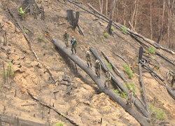 ป่าต้นน้ำเขื่อนแก่งกระจานถูกบุกรุก16จุด