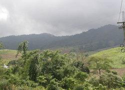 ชาวอุ้มผางบุกร้องป่าไม้ยึดพื้นที่ทำกิน