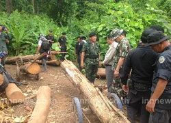 ทหารชายแดนยึดไม้สักจ่อลอยแพเข้าพม่า