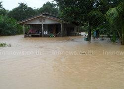 ฝนถล่มสตูล-น้ำเอ่อล้นท่วมสวนยางพารา