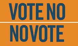 No vote กับ Vote no ผลต่างกันยังไง!!