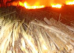 ไฟไหม้คลังไม้ยูคาลิปตัสศรีสะเกษคาด2วันดับ
