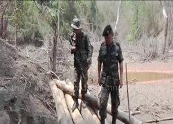 ทหาร-จนท.ป่าไม้ บุกยึดไม้สัก120ท่อนในห้วยสา