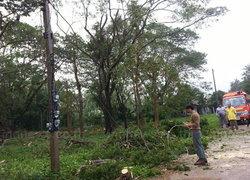 อุตุฯเตือนไทยตอนบนระวังพายุฤดูร้อน