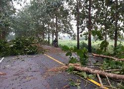 อุตุฯพยากรณ์อากาศเที่ยงวันลมพายุมีต่อเนื่อง