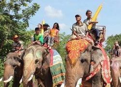 ช้าง165เชือกแห่เทียนพรรษาถวายพระสงฆ์