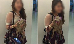 เฉลยความจริง ภาพดราม่า สาวจูงตะกวดเดินเล่นในห้าง