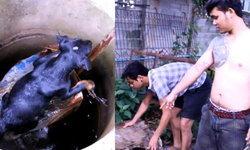 ประทับใจ 2 หนุ่มช่วยหมาตกบ่อลึก 3 เมตร สุดทุลักทุเล