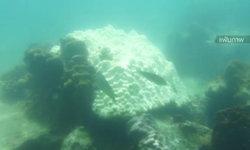 นักวิชาการแนะเฝ้าระวังปะการังฟอกขาว หลังอุณหภูมิน้ำทะเลสูงเกิน 30 องศาฯ