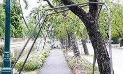 แบบนี้ก็ได้เหรอ? กทม.ปรับถนนจนต้นไม้รอบสวนจิตรฯล้ม เพิ่มงบทำเหล็กค้ำ