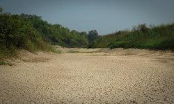 ตัดไม้ทำลายป่า ต้องให้มันแล้งแห้งตายเป็นทะเลทรายก่อนหรือ!! จึงจะสำนึก?